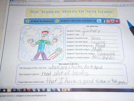 Guest post from Colleen Gallagher at Teaching Heart who shares some super fun ideas for End of the Year Stars!